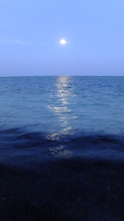 Indian Ocean.JPG