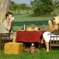 Bush Breakfast Serengeti