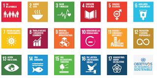 Agenda 2030 en México, una mirada desde la innovación social.