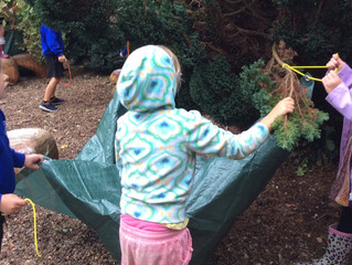 Primary Forest School