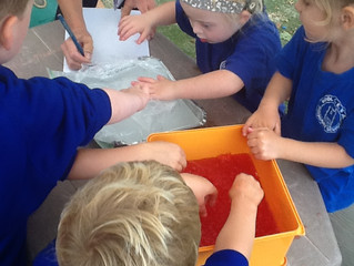 Our Senses - Oak Class