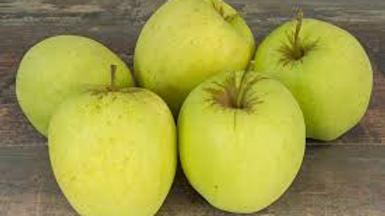 Pommes golden FR