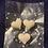 Thumbnail: Snow Fairae fragrance Bleeding 🩸 hearts ♥️ soy wax