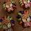 Thumbnail: Watermelon 🍉 mask bath bomb