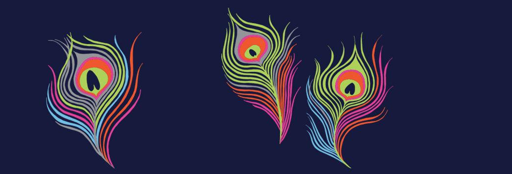 Sasis_branding_peacock_feathers.jpg