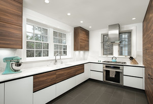 Kitchen Renovation, Chicago