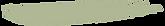 Green%2520Swoosh_edited_edited.png