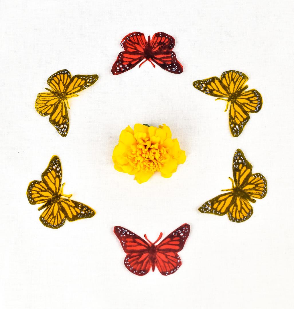 Paper Butterflies--handmade by artist Cal Duran