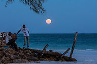 Full Moon Diani 2015 Dec-20.jpg