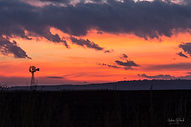 Sunrise Free State 2018 Mar-30.jpg