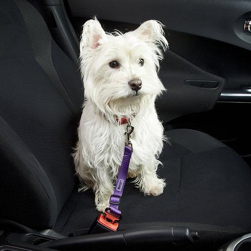Bunty Dog Seat Belt