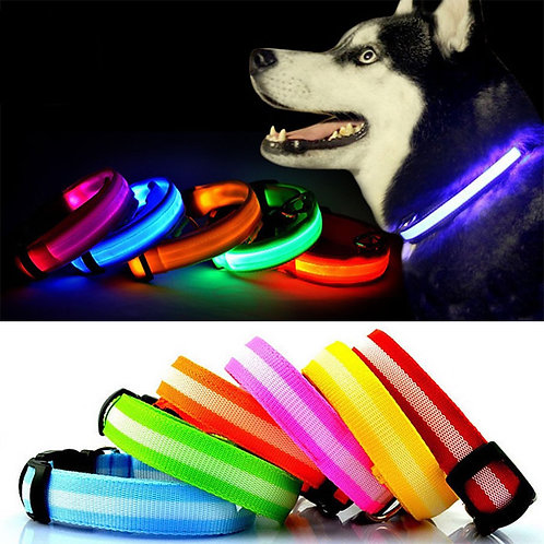 Adjustable LED Flashing Dog Collar for Puppies and Adults with Buckle and Clip