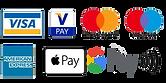 Sabor payment.png
