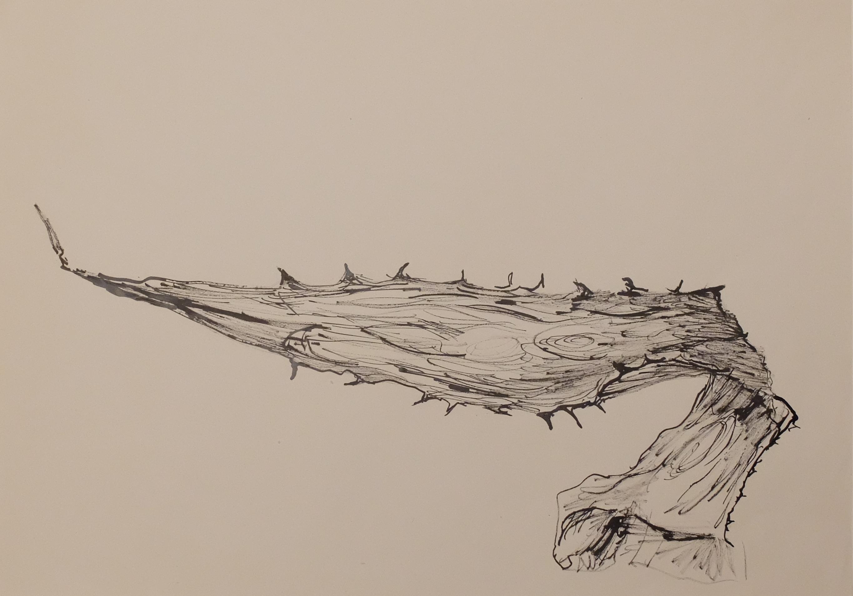 Encre de Chine et calame sur papier. 30 x 42 cm