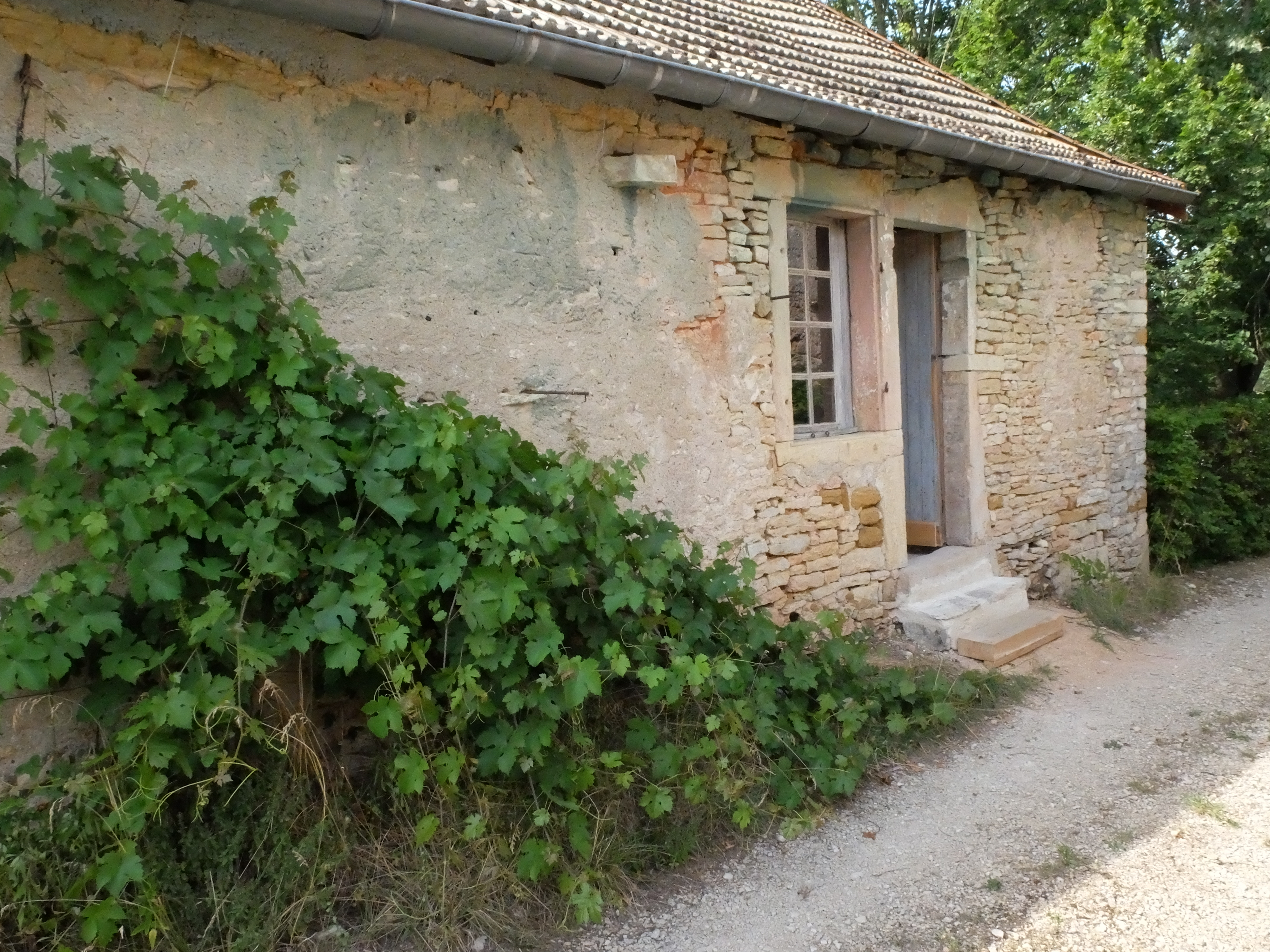 La maison de Felicia, Ozenay