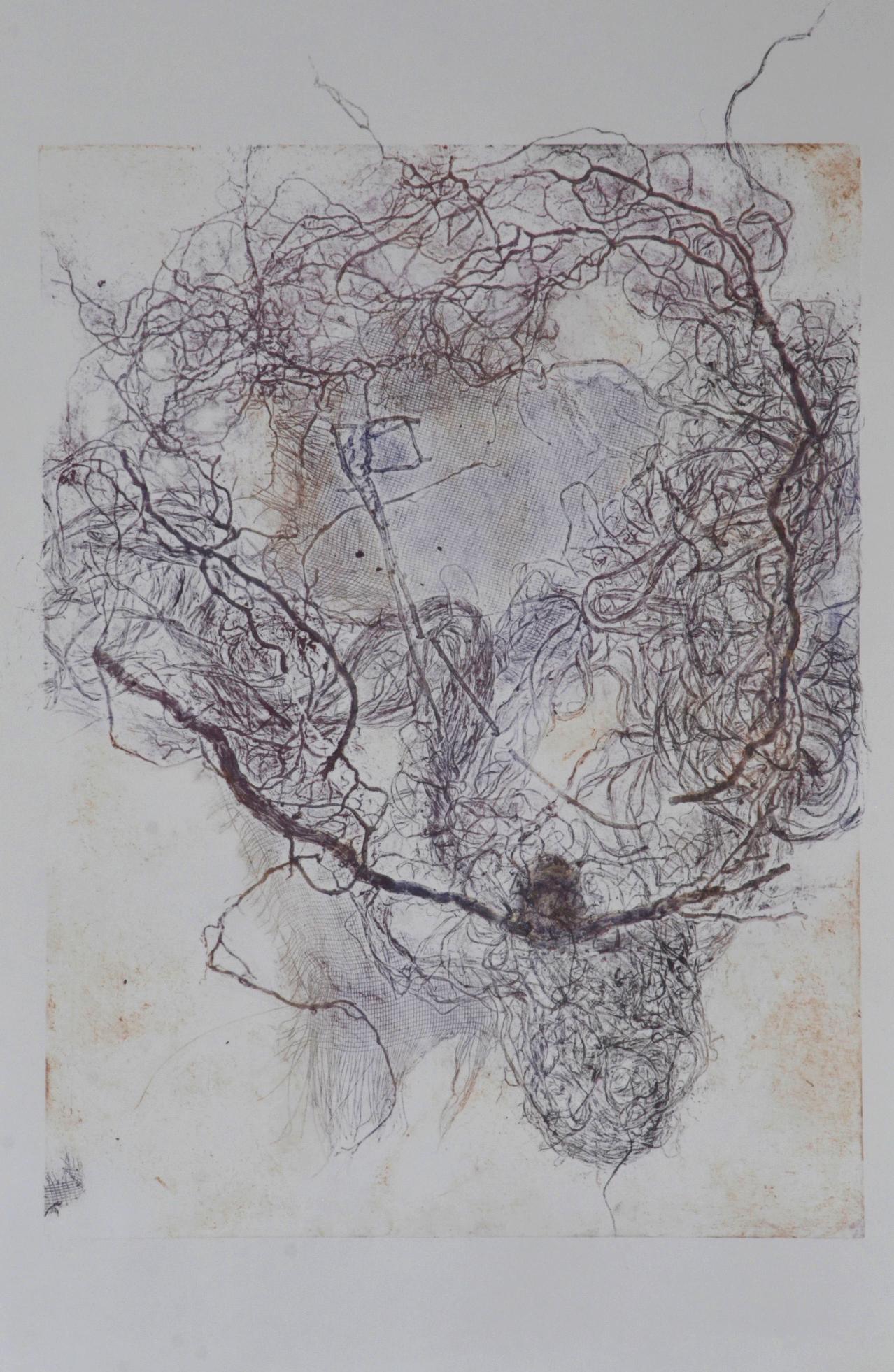 Collogravure. 50 x 70 cm