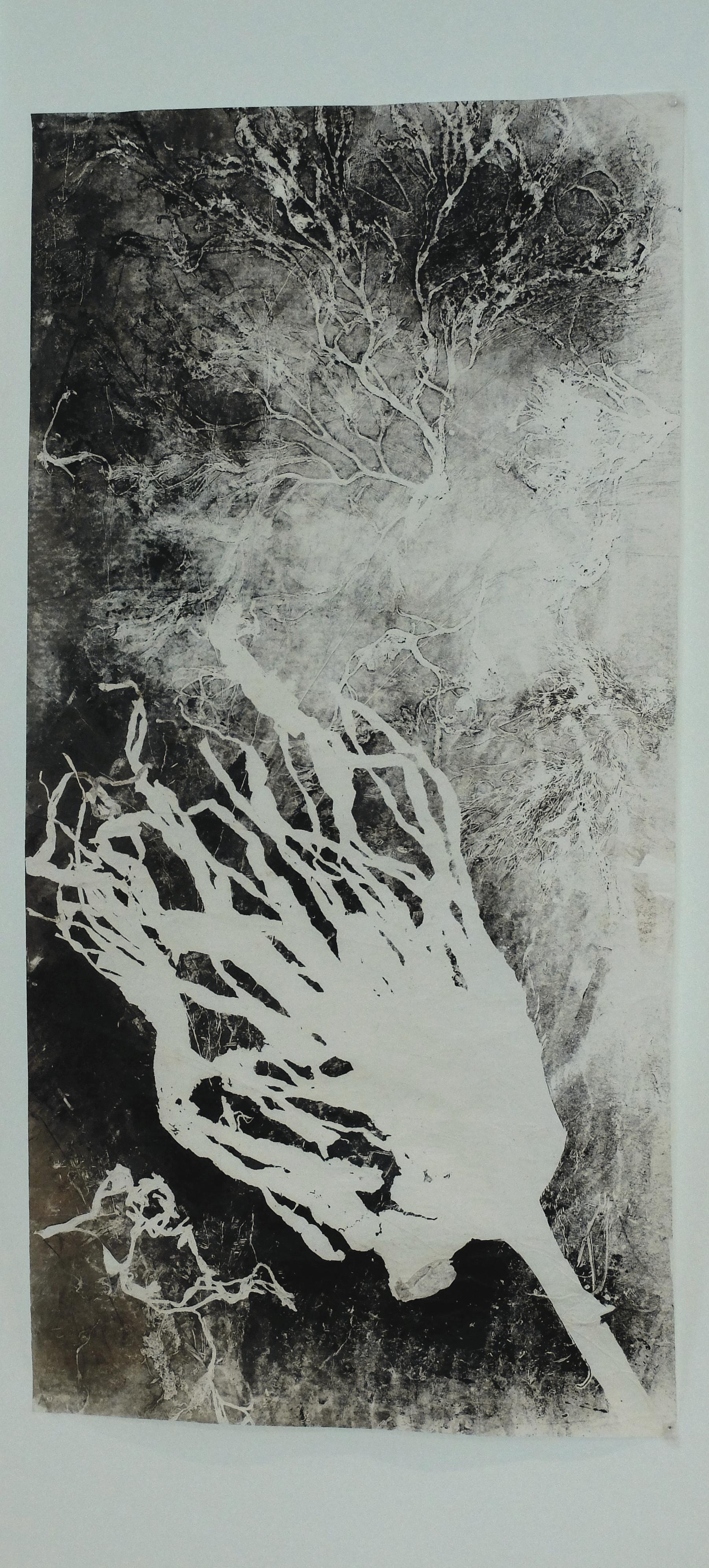 Monotypes d'algues. 50 x100 cm