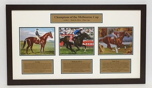 Champion of the Melbourne Cup HR06