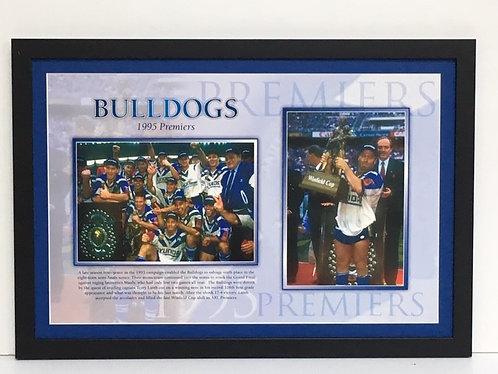 Bulldogs 1995 RL46