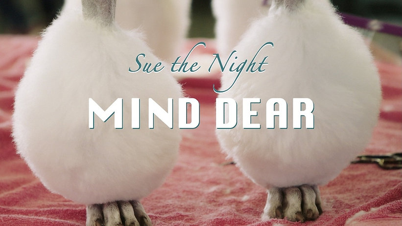 Sue the night mind dear Thessa Meijer Mu