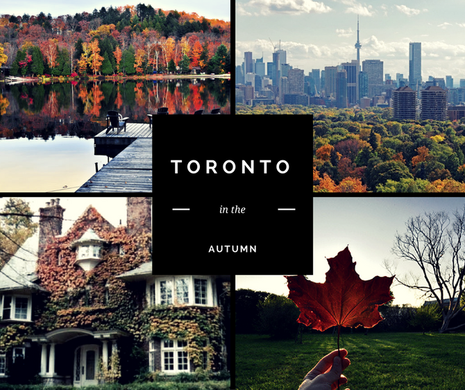 Toronto in the Fall: Must See Places