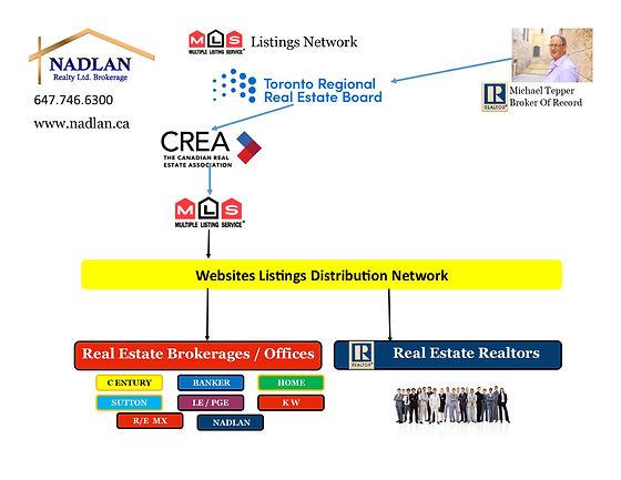 MLS listing network.jpg