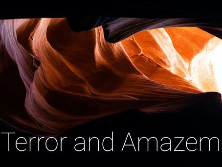 Terror and Amazement