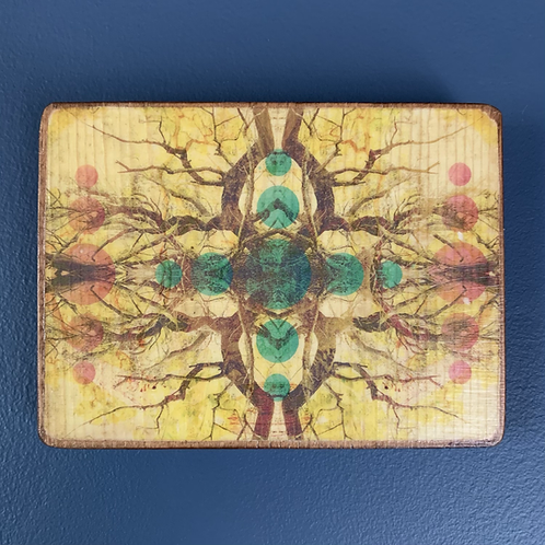 Symmetry in Nature Collage Wall Art