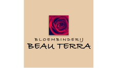 beau terra website.png