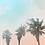 Thumbnail: Dusk