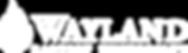 WBU - Logo - white.png