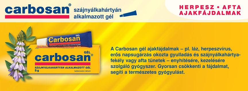 Carbosan fejlec 0408 (1).jpg
