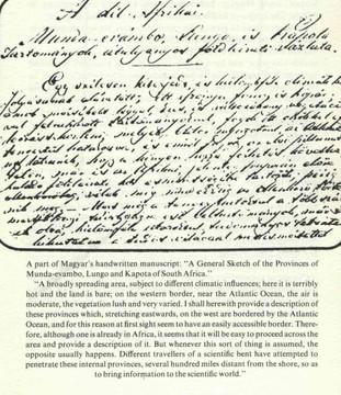 29.. Magyar L.kéziratából - Tanulmány  D