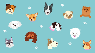 Turquoise-Dogs-and-Paw-Print-Cute-Zoom-V