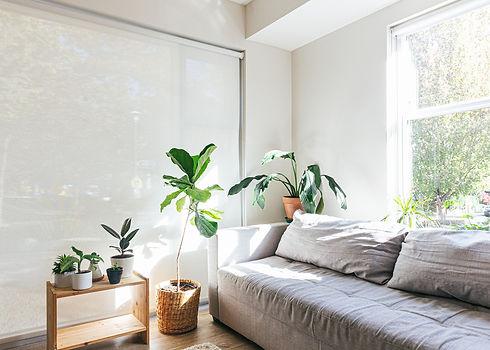Wohnzimmer_begruent.jpg