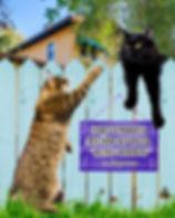 Питомник мейн-кунов Харьков, Питомник мейн-кунов Украина, Кинг Прайд, Кинг прайд Мейн-куны, огромные коты Харьков купить, купить котенка мейн-кун харьков, купить котенка мейн кун украина