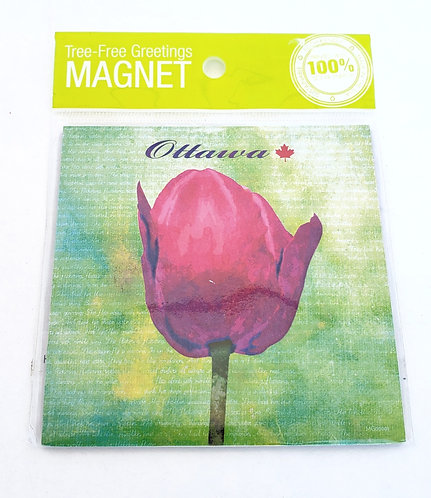 Magnet, green background with a pink tulip and the word OTTAWA above it, in clear plastic sleeve