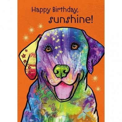 Orange card with multi-colored happy golden retriever; text Happy Birthday Sunshine