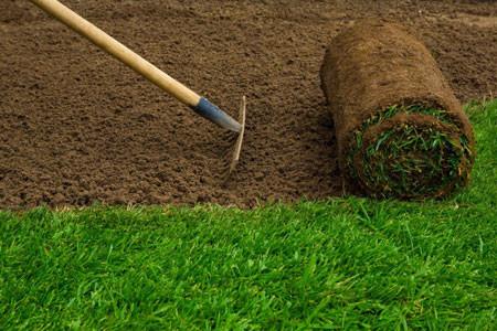 Lawn Isntallation.jpg