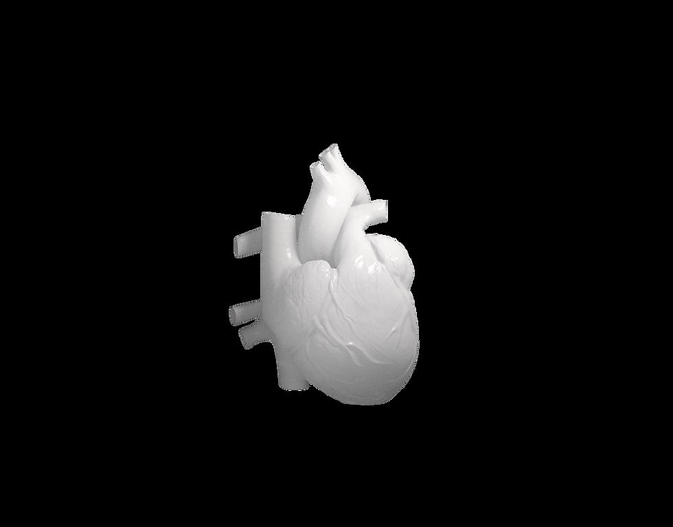 Heart_v006.png