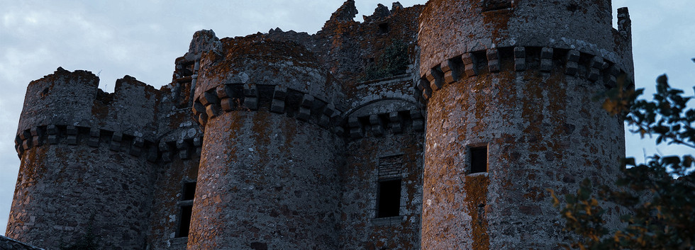 Château de l'Ebaupinay