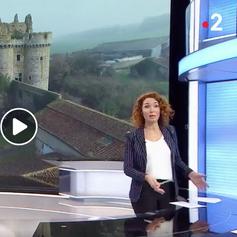 France 2 | 8 janvier 2019