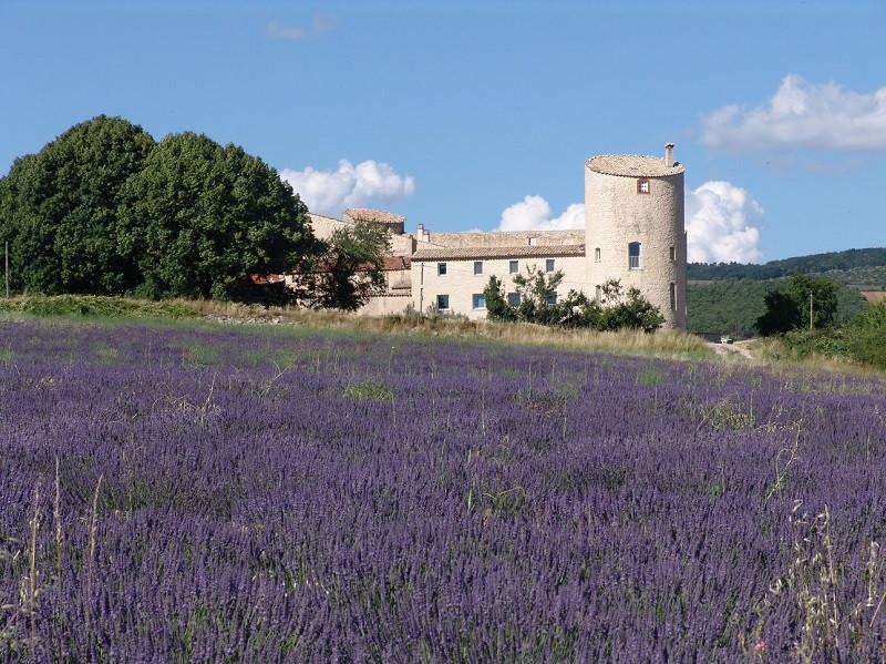 Chateau de la Gabelle