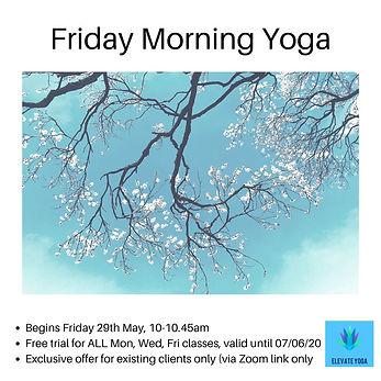 Friday Morning Yoga (1).jpg