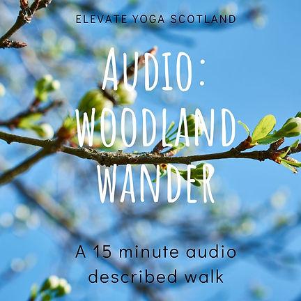 Copy of Sleepy Woodland Walk.jpg