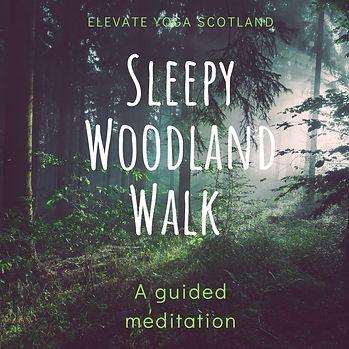Sleepy Woodland Walk.jpg
