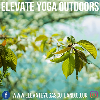 Elevate Yoga Outdoors.png