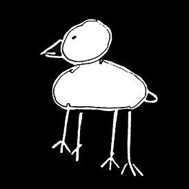 sqaure bird.jpg