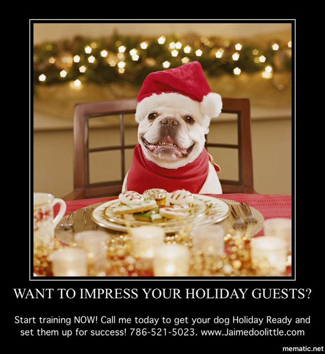 Get your dogs holiday ready with training!