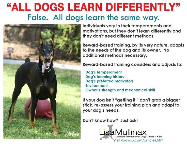 Dog Trainer Loxahatchee Florida